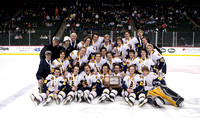 Boys Hockey State Tournament: Third Place Game