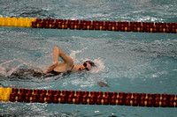 Girls Swim and Dive at State Meet