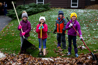 Leaf Raking 2017