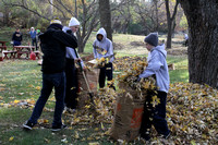 Leaf Raking 2011